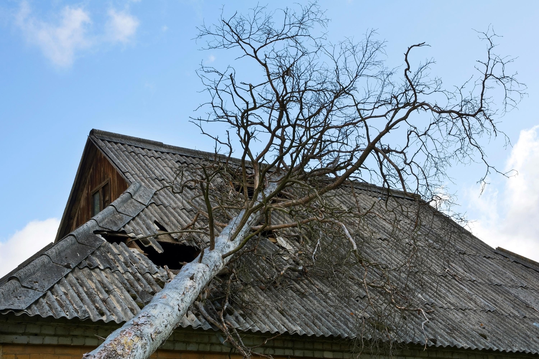 Die Wohngebäudeversicherung zahlt Schäden an Gebäuden.