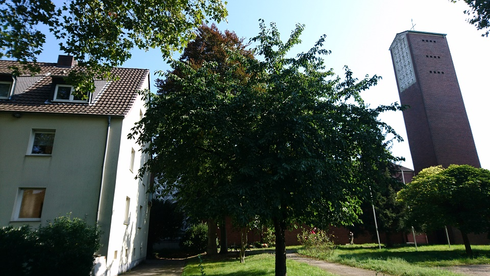 2021-09-09_wedaukirch4pkkj.jpg