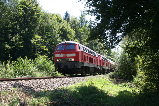 217 013-2 + 217 020-7 bei Kastl(Oberbay)