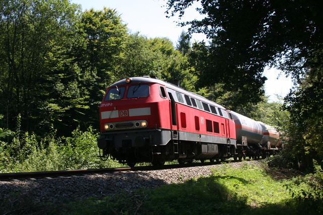 217 017-3 bei Kastl(Oberbay)
