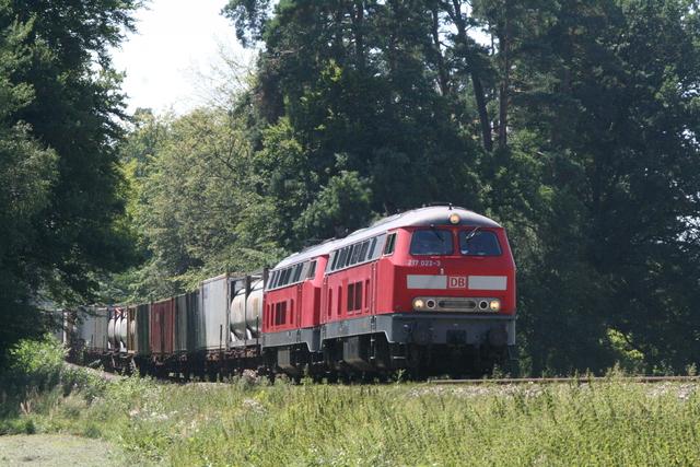 217 022-3 + 217 016-5 bei Kastl(Oberbay)