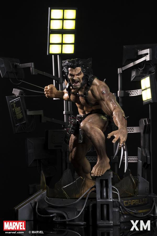 Premium Collectibles : Weapon X 24775094_196592681362ozsz5