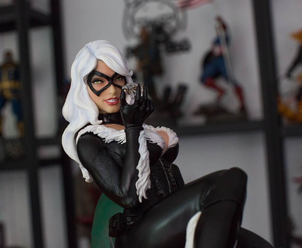 Premium Collectibles : Black Cat - Page 2 25398479_187632135267h8sbf