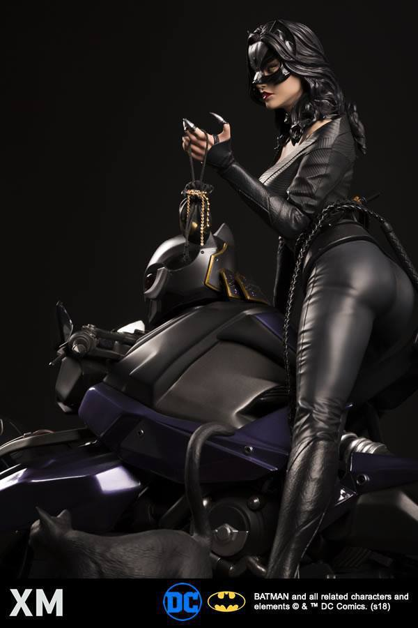 Premium Collectibles : Catwoman - Page 3 26168570_1975936459297locx