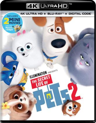 MULTI] - The Secret Life of Pets 2 2019 UHD BluRay 2160p