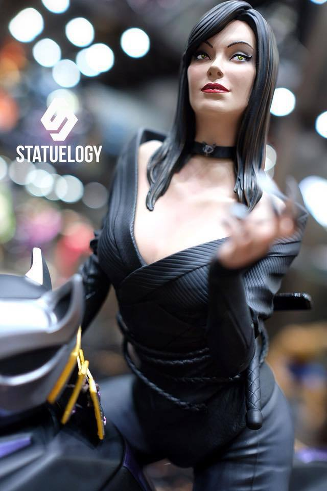 Premium Collectibles : Catwoman - Page 3 37676269_101564951625akc49