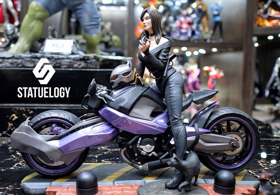 Premium Collectibles : Catwoman - Page 3 37739151_1015649516248cc0a