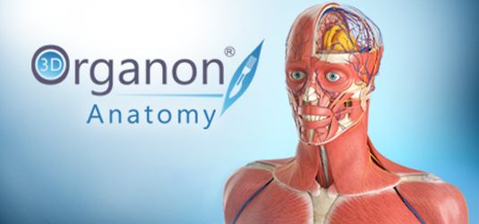 download 3D.Organon.Anatomy.2017