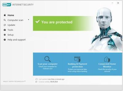 download Eset.Internet.Security.v11.2.49.0.Multilingual