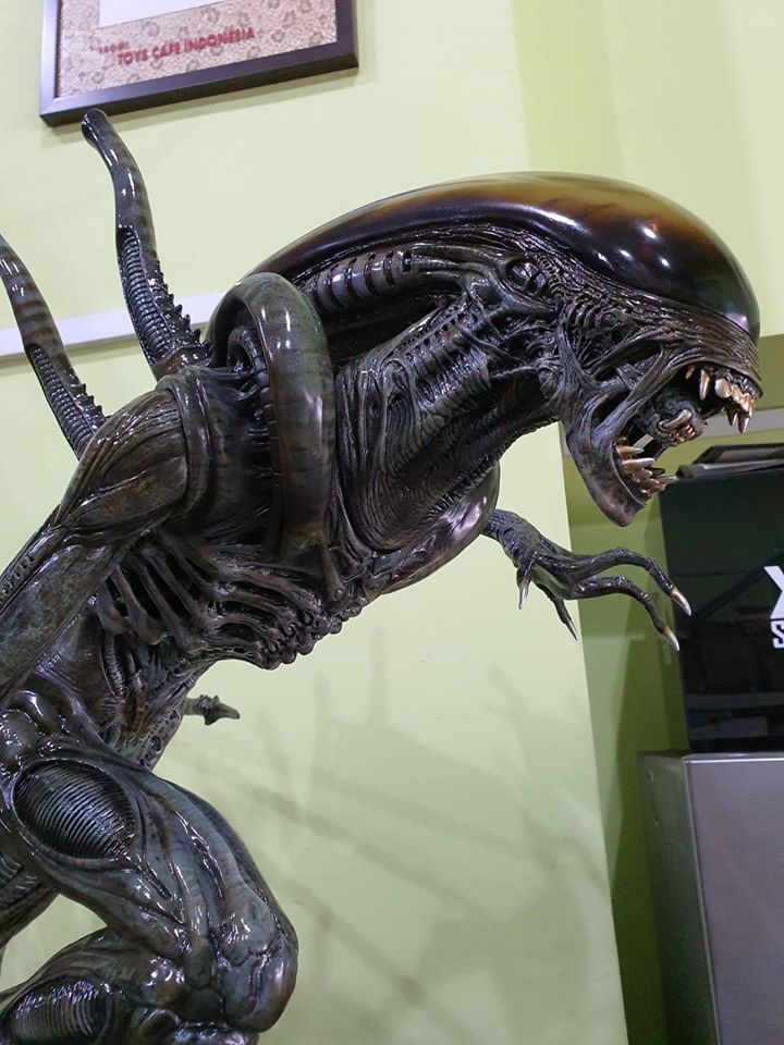 Premium Collectibles : Alien 4wqkoz