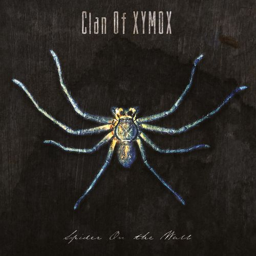 Clan of Xymox - Spider on the Wall (2020)