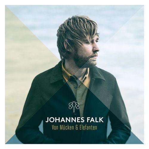 Johannes Falk - Von Mücken und Elefanten (2018)