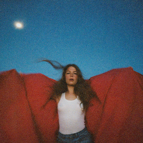 Maggie Rogers - Heard It In A Past Life (2019)