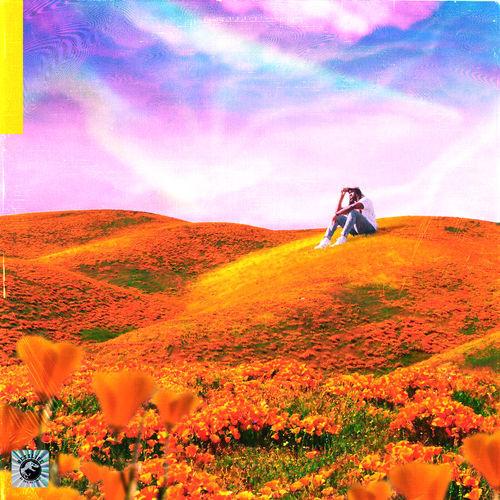 Rexx Life Raj - California Poppy (2018)