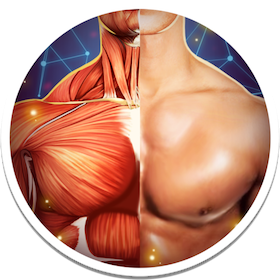 Human Anatomy 3D Pro