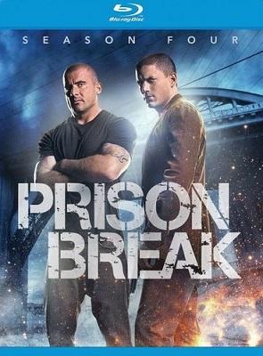Prison Break - Stagione 4 (2009) (Completa) HDTVMux 720p ITA ENG AC3 x264 mkv 5703100_sawfscy