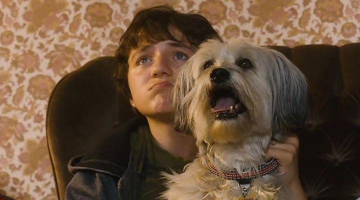 Kahraman Köpek Pudsey Ekran Görüntüsü 1