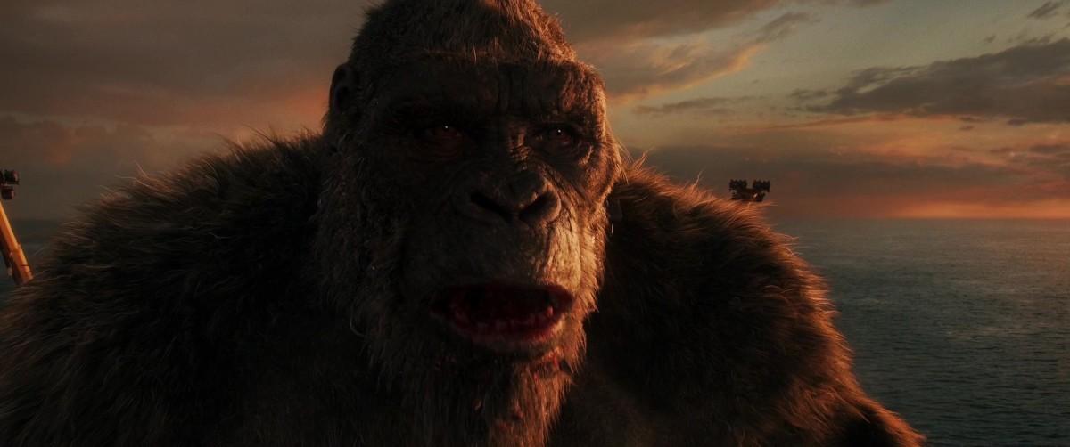 Godzilla ve Kong Ekran Görüntüsü 1