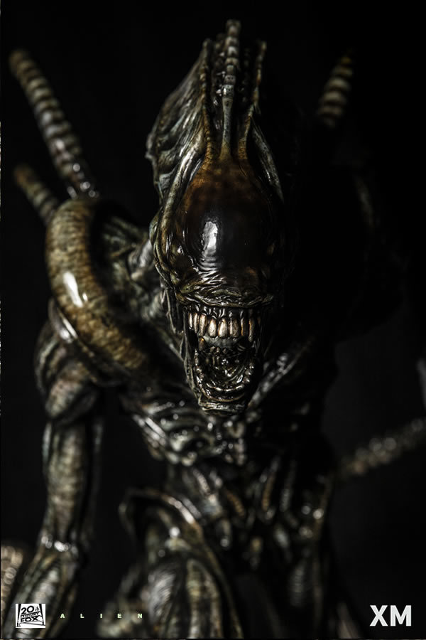 Premium Collectibles : Alien 6alhj4n