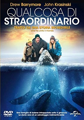 Qualcosa Di Straordinario (2012) HDTV 720P ITA ENG AC3 x264 mkv