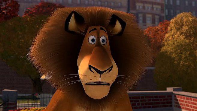 Madagaskar Ekran Görüntüsü 1