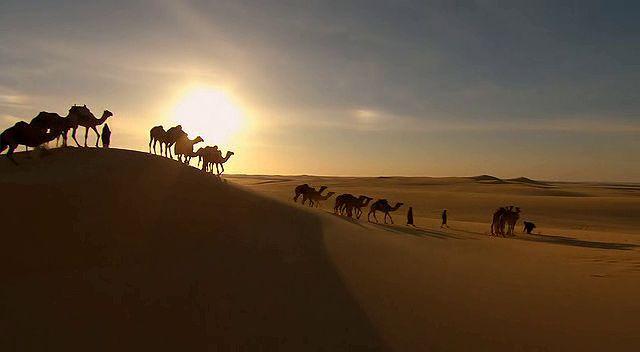 BBC Africa 5.Bölüm Sahara Ekran Görüntüsü 2