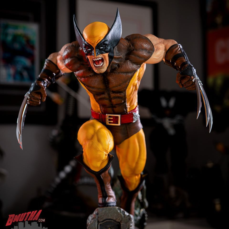 Premium Collectibles : Wolverine brown** - Page 3 86729744_284450929561bfjat