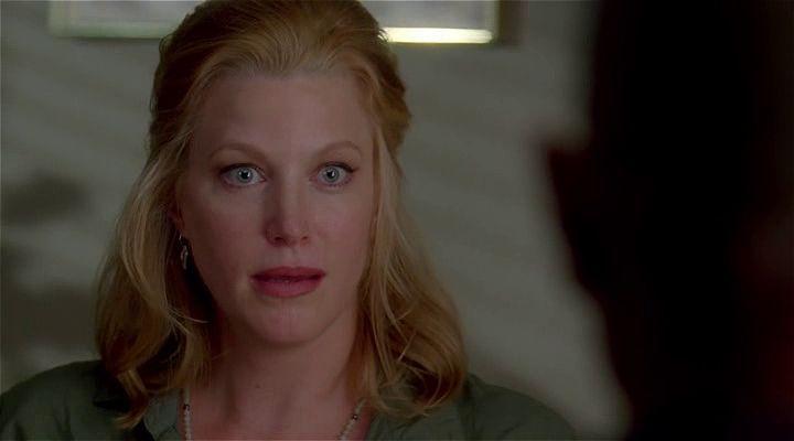 Breaking Bad: 3.Sezon Tüm Bölümler Ekran Görüntüsü 2