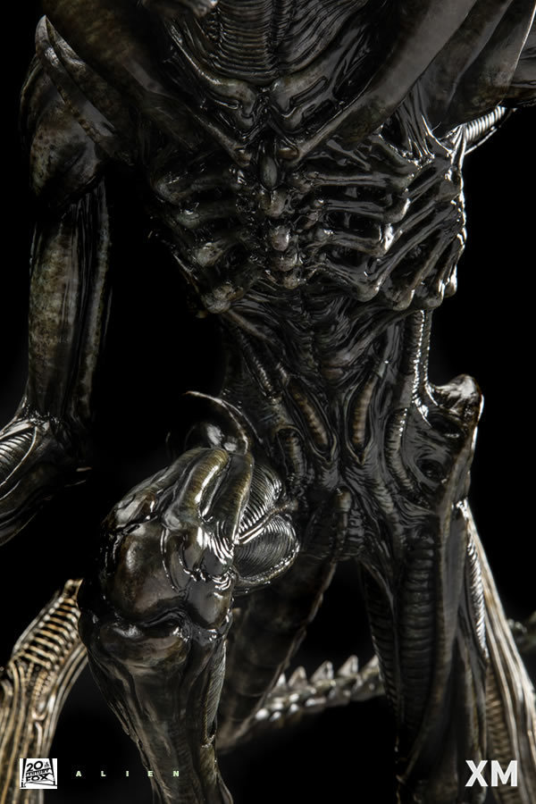 Premium Collectibles : Alien 955jgg