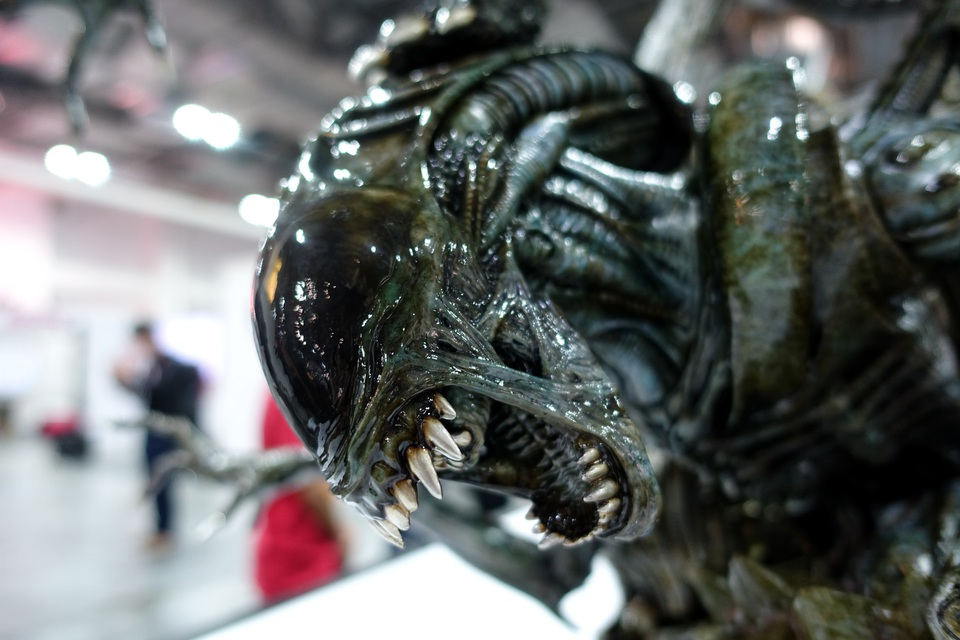 Premium Collectibles : Alien 9b1kj6g