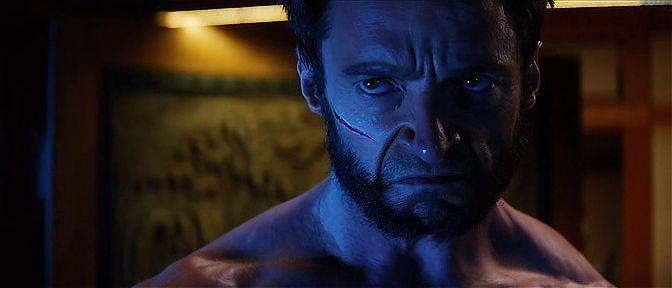 Wolverine Ekran Görüntüsü 1