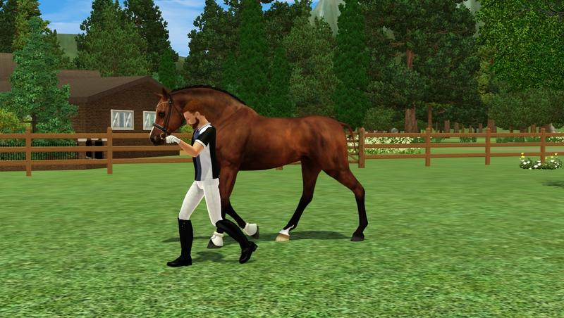 Bild a_mounted_games2ah_morzd24.jpg auf abload.de