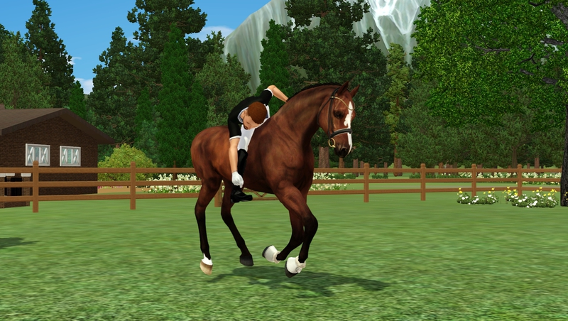 Bild a_mounted_games5ah_momccuc.jpg auf abload.de