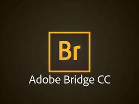 download Adobe.Bridge.CC.2018.2018.8.0.1