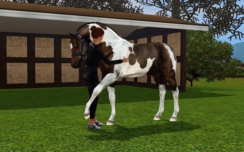 Bild ah_horse_huga_horse_h5ke1g.jpg auf abload.de