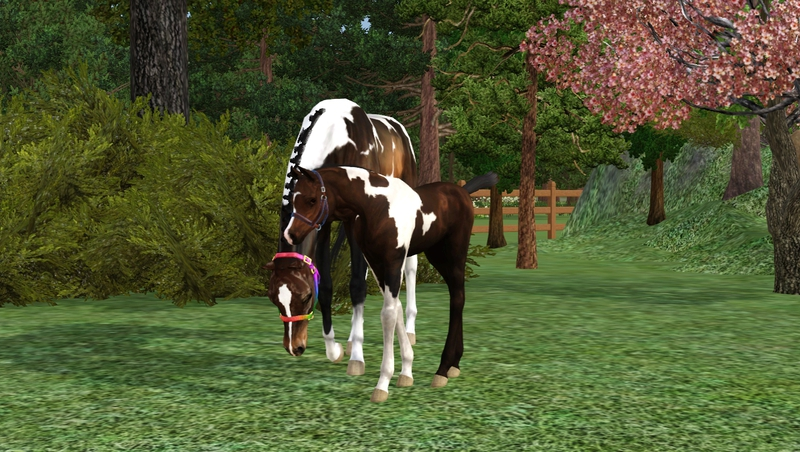 Bild ah_mom_and_foal6ch_morzc9s.jpg auf abload.de