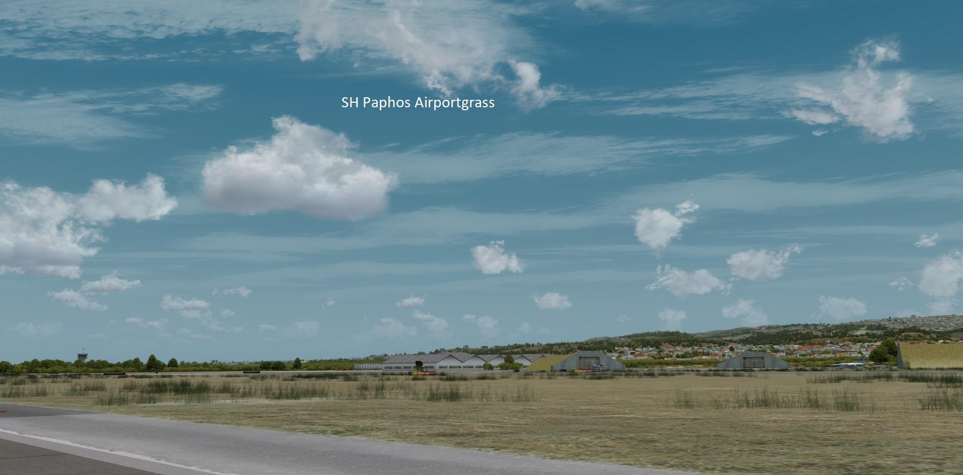 airportgrass5ps9f.jpg