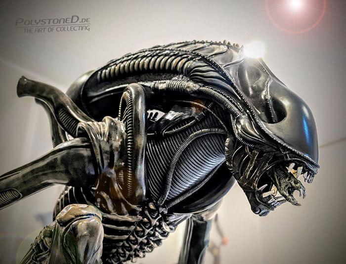 [Bild: alien2msjze.jpg]