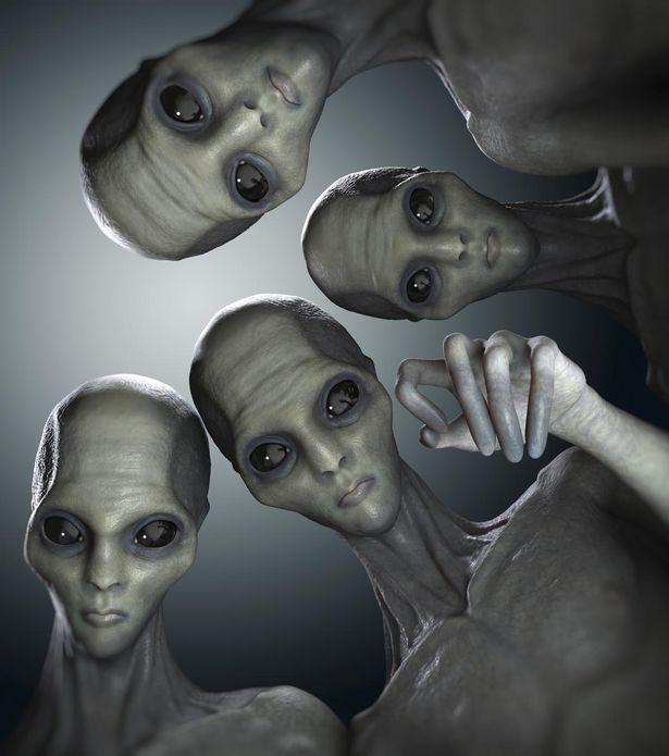 QBIT's avatar