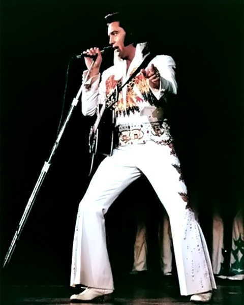 78d3a0b7328 05 - American Eagle Jumpsuit - Rex Martin s ELVIS Moments in Time