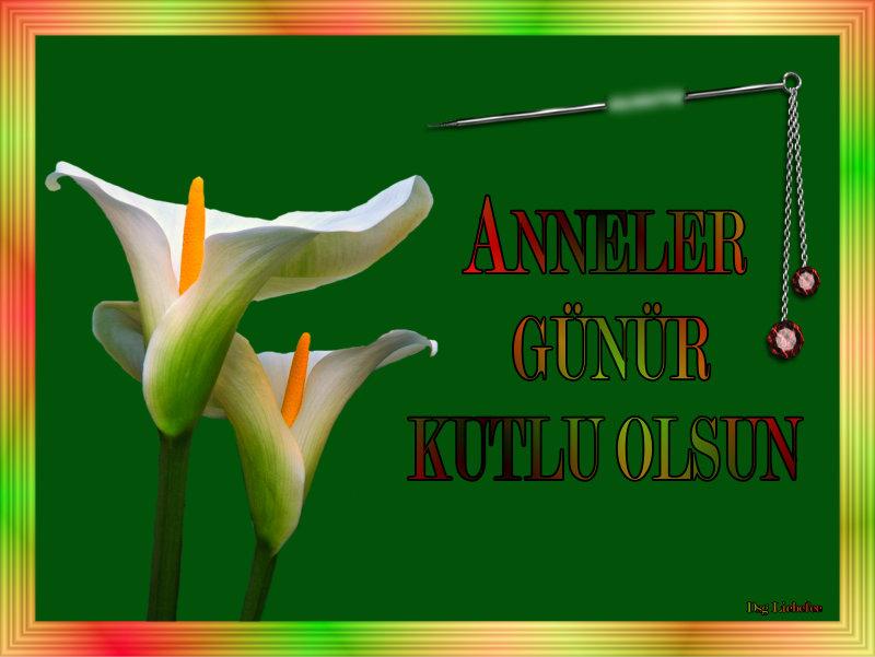 annelergn9_dsgliebefeimjsi.jpg