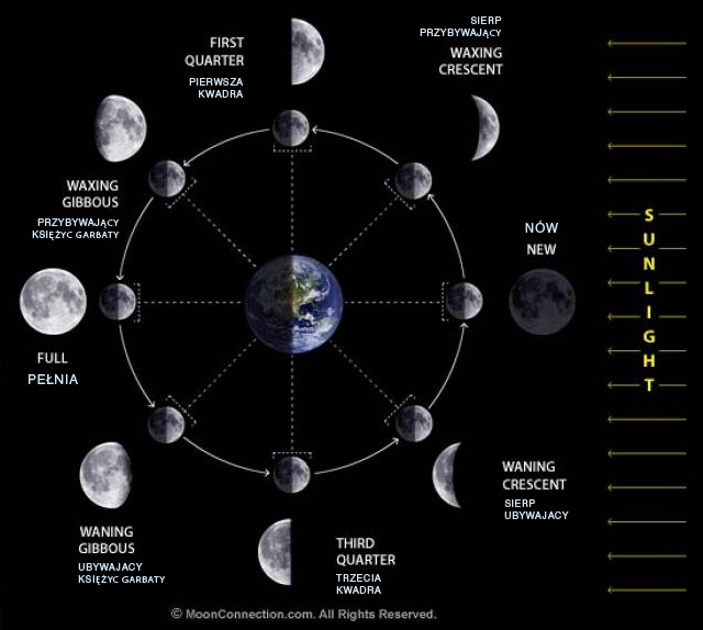 [Resim: ayin-evrelerei-moon-phdk7w.jpg]