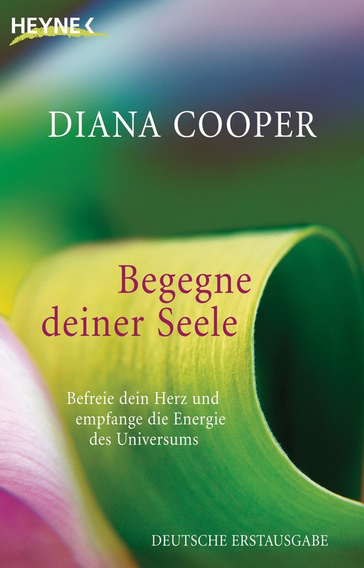 http://janine2610.blogspot.co.at/2016/10/rezension-begegne-deiner-seele-diana.html
