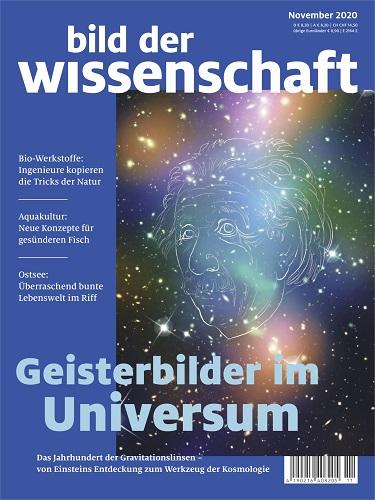 bild_der_wissenschaftmsk93.jpg