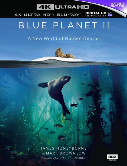 The Blue Planet II – Mavi Gezegen 2 – Türkçe indir