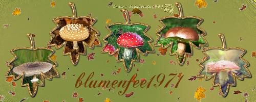 Kleiderkammer von Blumenfee1971 Blumenfeeherbst2017cvjpy
