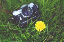camera-photographer-yovs2o.jpg