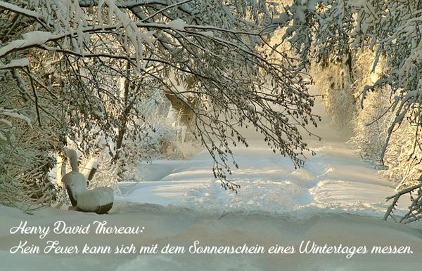 https://abload.de/img/cd_spruch-wintertag2xpwi.jpg
