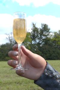 champagne13jk4.png