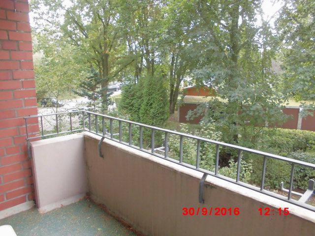 vermieter erlaubt kein katzennetz f r den balkon katzen forum. Black Bedroom Furniture Sets. Home Design Ideas